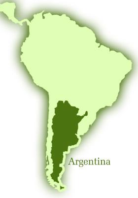 Sai Movement in Argentina